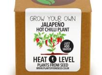 jalapeno chili paprika
